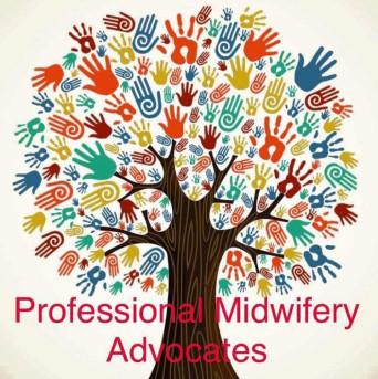Professional Midwifery Advocate